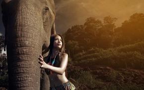 Picture girl, light, elephant