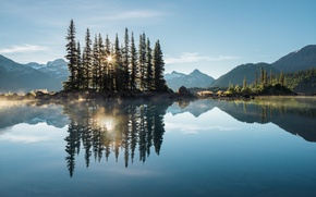 Picture forest, trees, mountains, lake, morning, haze