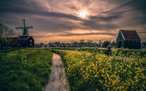 Picture THROUGH THE YELLOW FURROW, treatment, home, mill