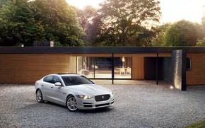 Picture jaguar, portfolio