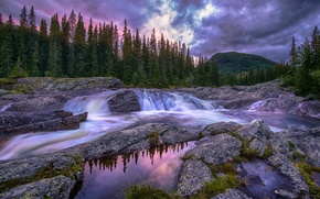 Picture forest, the sky, water, clouds, river, the evening, Norway, threads