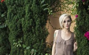 Picture girl, wall, woman, flowers, leaves, model, tattoo, blonde, tattoos, female, Alysha Nett