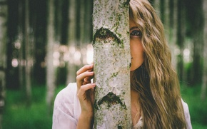 Picture look, face, tree, model, hair, Jacqueline, birch