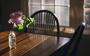 Wallpaper room, light, lilac