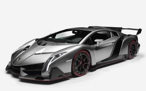 Picture Lamborghini, supercar, Lamborghini, hypercar, 2013, Veneno, veneno