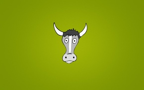 Picture animal, cow, minimalism, head, horns, eyed, green background