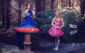 Picture Alice, Alice in Wonderland, based on the movie