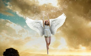 Picture the sky, wings, angel, flight