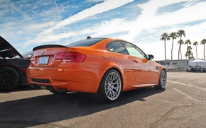 Picture car, BMW, line, tuning, power, orange, rock park edition