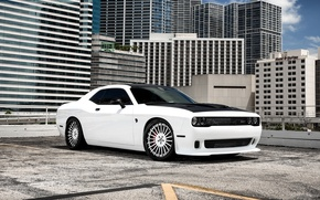 Picture Dodge, Challenger, wheels, Hellcat, Forgiato