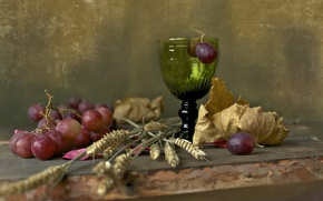 Picture leaves, berries, glass, grapes, ears, Board, still life, still life