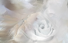 Picture abstraction, color, Ice Rose