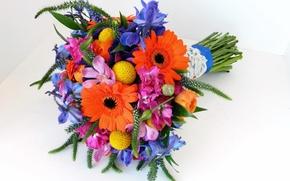 Picture bouquet, gerbera, irises, Irises, Bouquets, Gerberas
