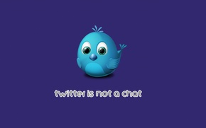Picture background, texture, logo, bird, twitter, chat