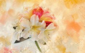 Picture flowers, texture, petals, canvas