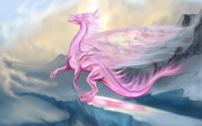 Picture pink, dragon, flight