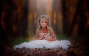 Picture autumn, sheet, girl, danielle balance