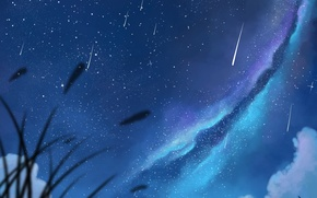 Picture two, art, guy, anime, pair, girl, dias mardianto, donsaid, the milky way, night, the sky, ...