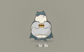 Wallpaper Batman, 1920x1080, too Fat to Bat