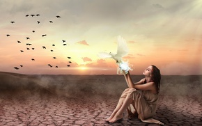 Picture girl, sunset, birds