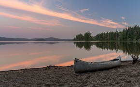 Picture forest, beach, lake, dawn, boat