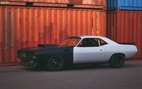 Picture Dodge, dodge, challenger, Challenger