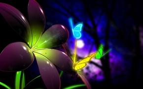 Wallpaper flower, butterfly, color, 154