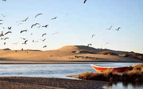 Picture sand, water, birds, river, boat, dunes, stranded