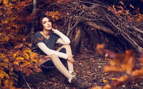 Picture autumn, look, leaves, girl, branches, nature, face, background, Wallpaper, mood, foliage, brunette, wallpapers