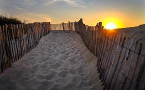 Picture beach, the sun, dunes