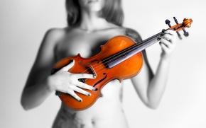 Picture girl, violin, What Violin
