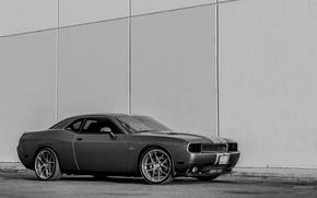 Picture Challenger, Dodge Challenger, tuning, avto