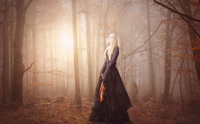 Picture forest, girl, violin