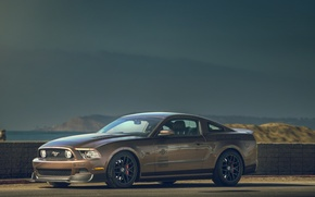Picture Ford, mustang, RTR, 2013