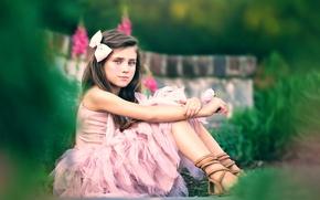 Picture flower, dress, girl, Serene, Ashlyn Mae