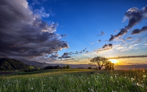Picture field, summer, the sky, the sun, mountains, summer, sky, field, mountains, sun