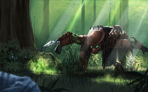 Picture forest, trees, weapons, stone, predator, jungle, art, predator, Following Neytiri, crouched