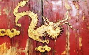 Picture metal, dragon, Board, door, wood, riveting