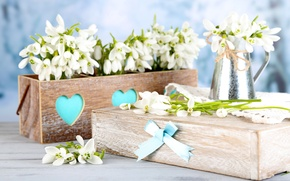 Picture gift, bouquet, spring, snowdrops, white, flowers, spring, delicate, snowdrops