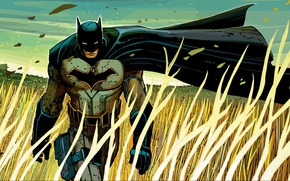 Picture fantasy, Batman, field, art, man, comics, artwork, wind, mask, superhero, DC Comics, cloak, Bruce Wayne, …