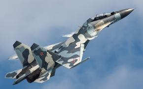 Picture fighter, Dry, Su-30MKM