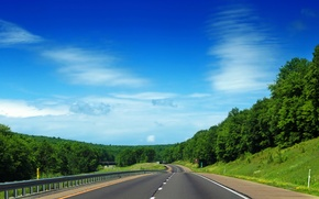 Picture road, greens, the sky, grass, leaves, clouds, trees, nature, background, tree, widescreen, Wallpaper, foliage, track, …