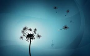 Picture dandelion, the wind, figure, plant, part, lush, fly, blows