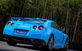 Picture Nissan, blue, gtr, bamboo, back, r35