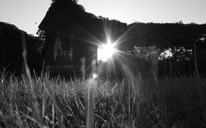 Wallpaper the sun, grass, house