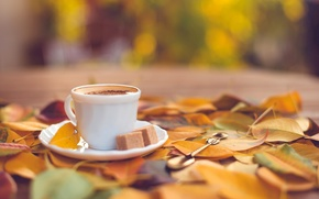 Picture autumn, leaves, coffee, yellow, spoon, Cup, sugar, saucer, bokeh