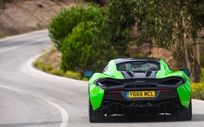 Picture McLaren, rear view, 570S