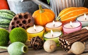 Picture autumn, decoration, Maki, candles, watermelon, pumpkin, rods, decor, candlesticks