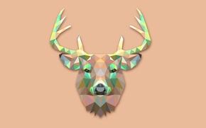 Picture abstraction, animal, minimalism, deer, horns, deer