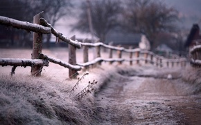 Picture frost, the fence, Winter, blur, path, fence